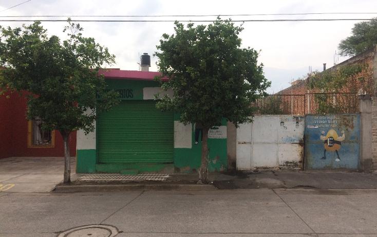 Foto de terreno habitacional en venta en  , zacoalco de torres centro, zacoalco de torres, jalisco, 1311339 No. 02