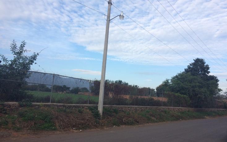 Foto de terreno habitacional en venta en, zacoalco de torres centro, zacoalco de torres, jalisco, 1492611 no 04