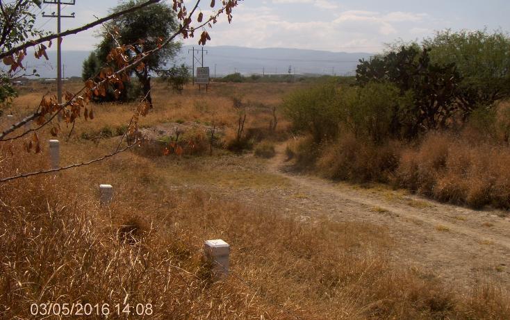 Foto de terreno habitacional en venta en  , zacoalco de torres centro, zacoalco de torres, jalisco, 2045593 No. 03