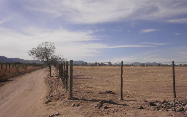 Foto de terreno comercial en venta en  , zamora, hermosillo, sonora, 1130875 No. 02