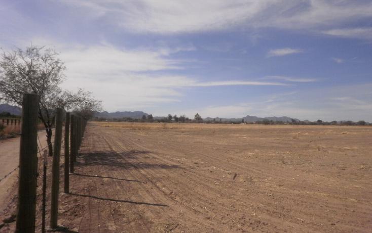 Foto de terreno comercial en venta en  , zamora, hermosillo, sonora, 1130875 No. 03