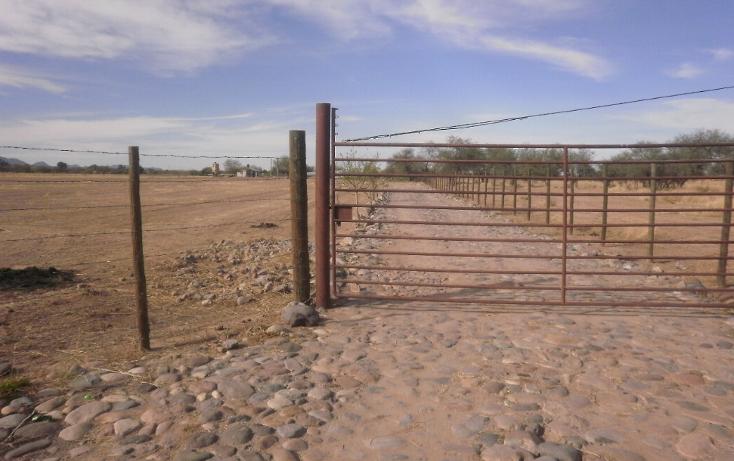 Foto de terreno comercial en venta en  , zamora, hermosillo, sonora, 1130875 No. 06