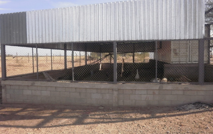 Foto de terreno comercial en venta en  , zamora, hermosillo, sonora, 1130875 No. 10