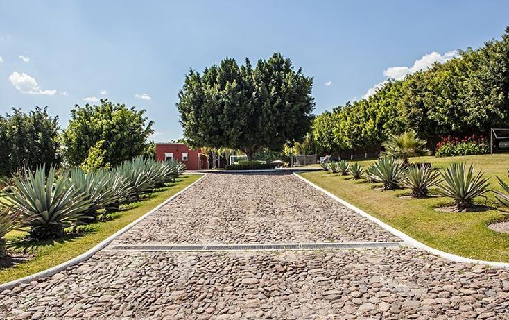 Foto de rancho en venta en  , zapotlan del rey, zapotlán del rey, jalisco, 737749 No. 07