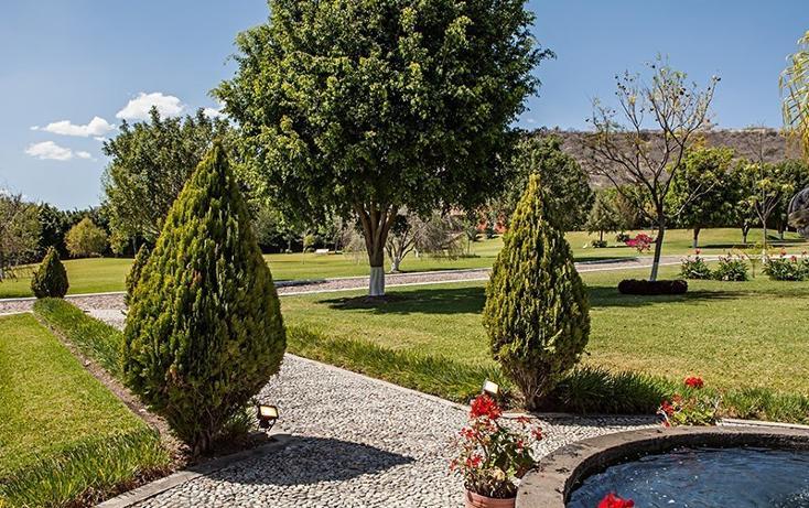 Foto de rancho en venta en  , zapotlan del rey, zapotlán del rey, jalisco, 737749 No. 08