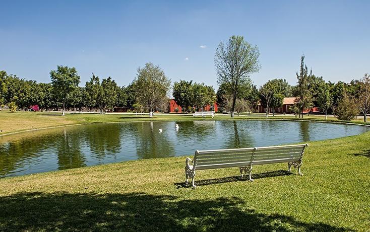 Foto de rancho en venta en  , zapotlan del rey, zapotlán del rey, jalisco, 737749 No. 09