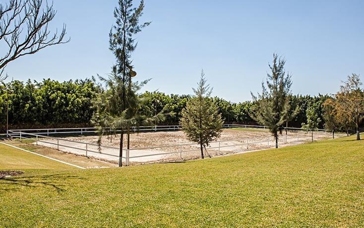 Foto de rancho en venta en  , zapotlan del rey, zapotlán del rey, jalisco, 737749 No. 11