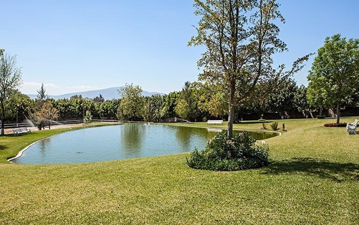 Foto de rancho en venta en  , zapotlan del rey, zapotlán del rey, jalisco, 737749 No. 12