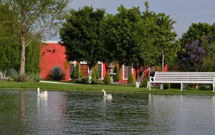 Foto de rancho en venta en  , zapotlan del rey, zapotlán del rey, jalisco, 737749 No. 15