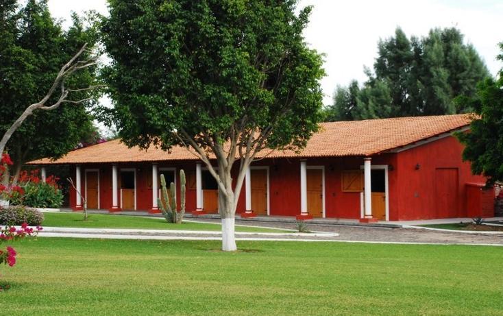 Foto de rancho en venta en  , zapotlan del rey, zapotlán del rey, jalisco, 737749 No. 17