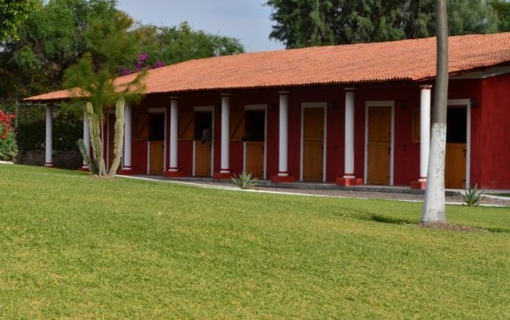 Foto de rancho en venta en  , zapotlan del rey, zapotlán del rey, jalisco, 737749 No. 18