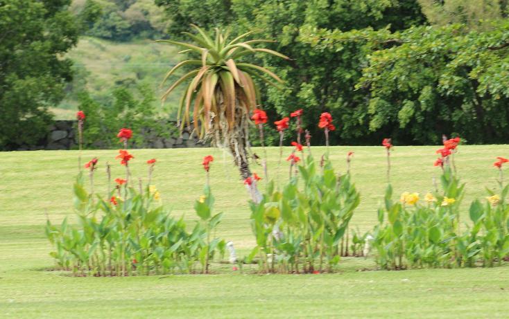 Foto de rancho en venta en  , zapotlan del rey, zapotlán del rey, jalisco, 737749 No. 32