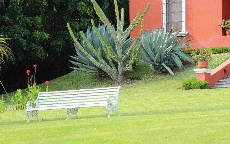 Foto de rancho en venta en  , zapotlan del rey, zapotlán del rey, jalisco, 737749 No. 33