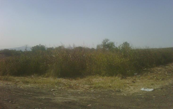 Foto de terreno habitacional en venta en  , zapotlanejo, zapotlanejo, jalisco, 1058265 No. 02