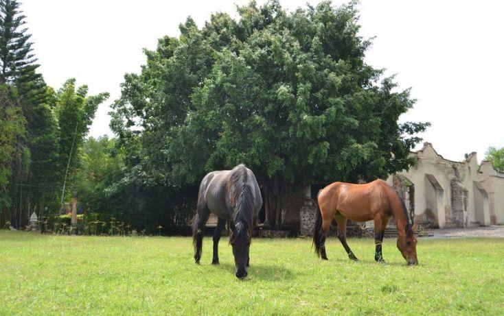 Foto de rancho en venta en, zapotlanejo, zapotlanejo, jalisco, 996371 no 18