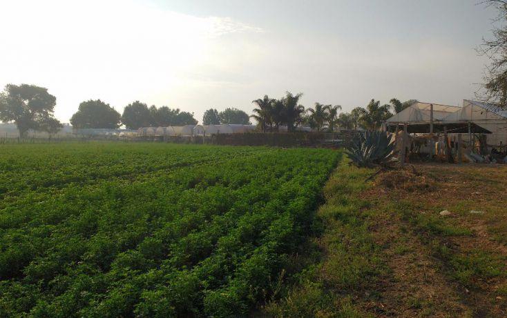 Foto de terreno habitacional en venta en zaragoza 120, san sebastián el grande, tlajomulco de zúñiga, jalisco, 1741812 no 03