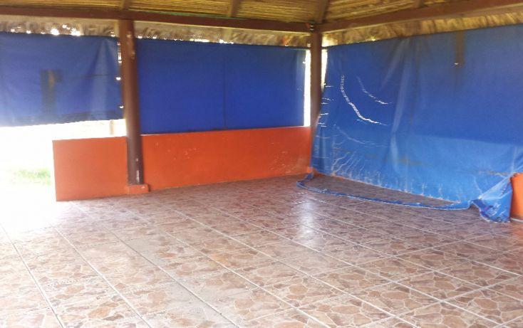Foto de terreno habitacional en renta en zaragoza lote 1 manzana 2, pajaritos, coatzacoalcos, veracruz, 1833870 no 13