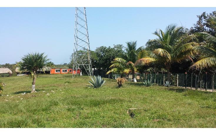 Foto de terreno habitacional en renta en  , pajaritos, coatzacoalcos, veracruz de ignacio de la llave, 1833870 No. 03