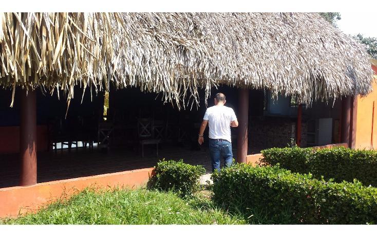 Foto de terreno habitacional en renta en  , pajaritos, coatzacoalcos, veracruz de ignacio de la llave, 1833870 No. 11