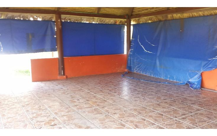 Foto de terreno habitacional en renta en  , pajaritos, coatzacoalcos, veracruz de ignacio de la llave, 1833870 No. 14