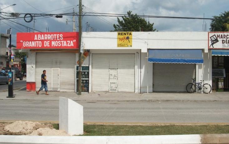 Foto de local en renta en  , zazil ha, solidaridad, quintana roo, 1064649 No. 05