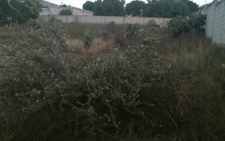 Foto de terreno habitacional en venta en  , zempoala centro, zempoala, hidalgo, 1258147 No. 05