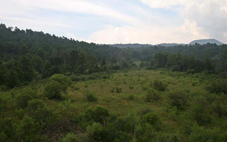 Foto de terreno habitacional en venta en  , zirahuen, salvador escalante, michoacán de ocampo, 1308237 No. 06