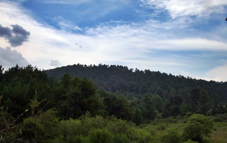 Foto de terreno habitacional en venta en  , zirahuen, salvador escalante, michoacán de ocampo, 1308237 No. 07