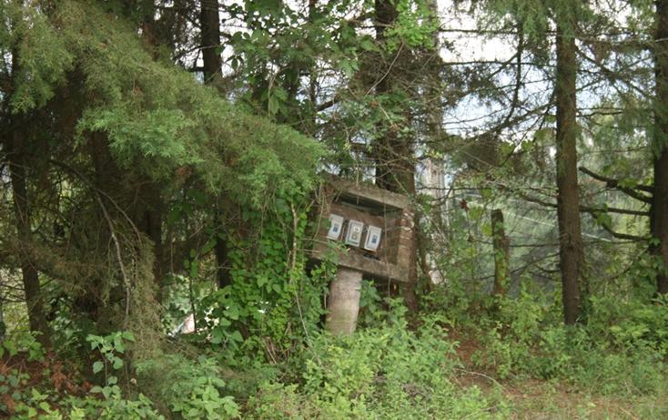 Foto de terreno habitacional en venta en  , zirahuen, salvador escalante, michoacán de ocampo, 1308237 No. 08