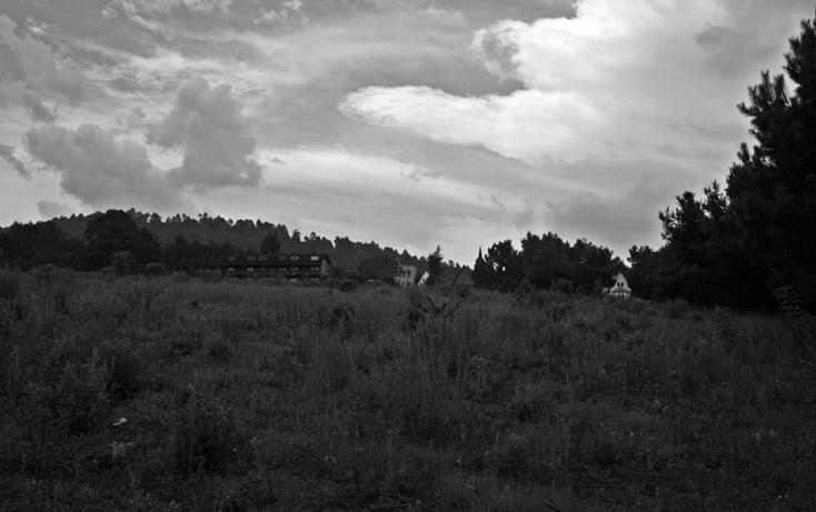 Foto de terreno habitacional en venta en  , zirahuen, salvador escalante, michoacán de ocampo, 1308237 No. 10