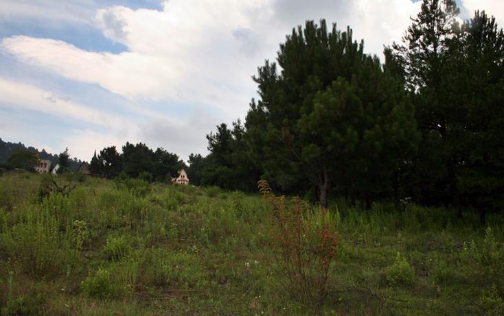 Foto de terreno habitacional en venta en  , zirahuen, salvador escalante, michoacán de ocampo, 1308237 No. 12