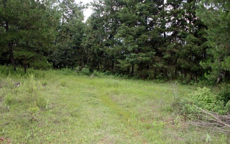 Foto de terreno habitacional en venta en  , zirahuen, salvador escalante, michoacán de ocampo, 1308237 No. 13
