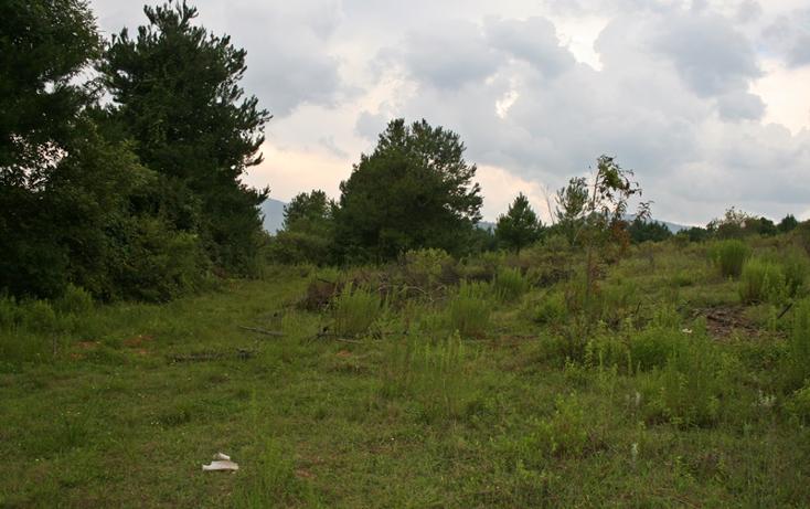 Foto de terreno habitacional en venta en  , zirahuen, salvador escalante, michoacán de ocampo, 1308237 No. 14