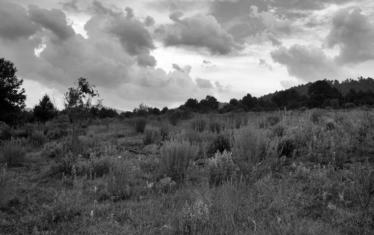 Foto de terreno habitacional en venta en  , zirahuen, salvador escalante, michoacán de ocampo, 1308237 No. 15