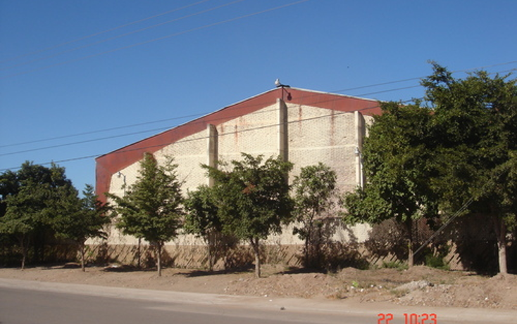 Foto de nave industrial en venta en  , zona centro, salvador alvarado, sinaloa, 1075197 No. 01
