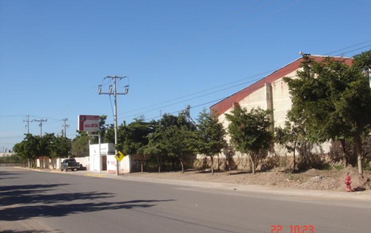 Foto de nave industrial en venta en  , zona centro, salvador alvarado, sinaloa, 1075197 No. 04