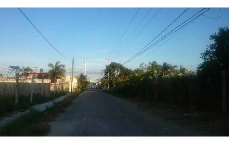 Foto de edificio en venta en  , zona dorada, mérida, yucatán, 1620196 No. 03