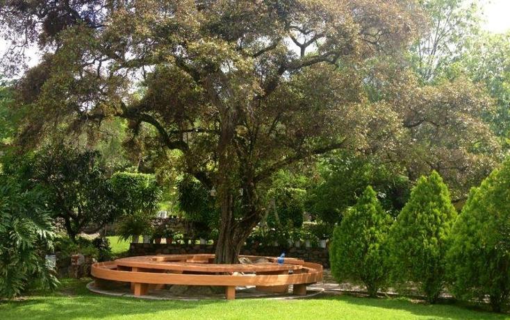 Foto de rancho en venta en zona el bosque 0, pilcaya, pilcaya, guerrero, 787709 No. 07