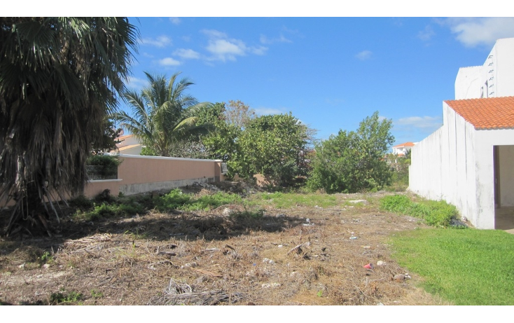 Foto de terreno habitacional en venta en  , zona hotelera, benito ju?rez, quintana roo, 1062715 No. 05