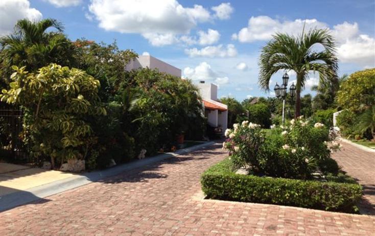 Foto de departamento en renta en  , zona hotelera, benito juárez, quintana roo, 1063997 No. 19