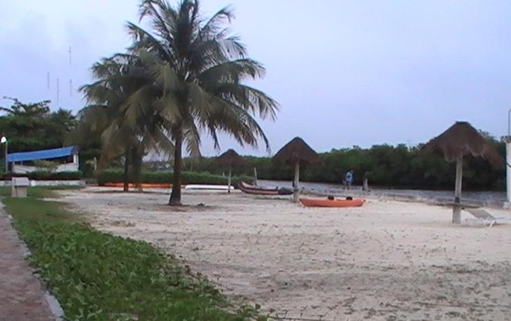 Foto de departamento en renta en  , zona hotelera, benito ju?rez, quintana roo, 1145523 No. 08