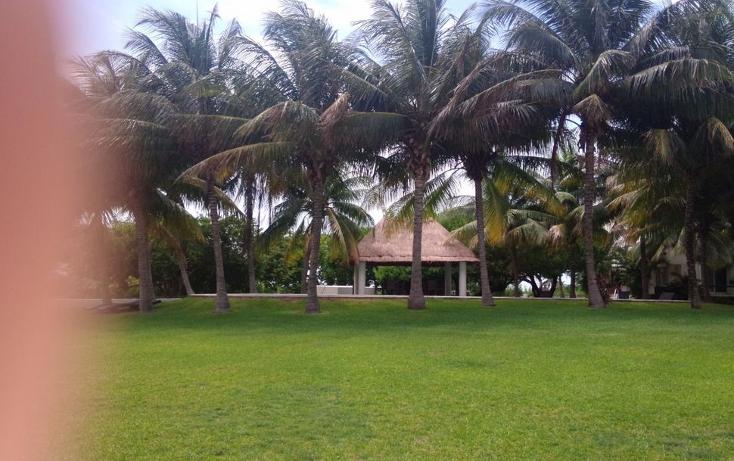 Foto de departamento en venta en  , zona hotelera, benito ju?rez, quintana roo, 1225281 No. 15