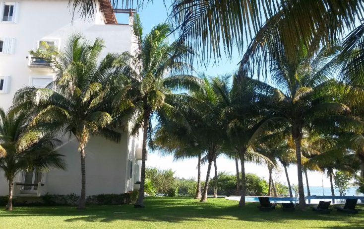 Foto de departamento en renta en, zona hotelera, benito juárez, quintana roo, 1285015 no 01