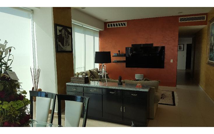Foto de departamento en venta en  , zona hotelera, benito juárez, quintana roo, 1777062 No. 06