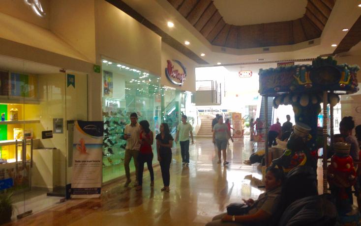 Foto de local en venta en  , zona hotelera norte, puerto vallarta, jalisco, 2635539 No. 06