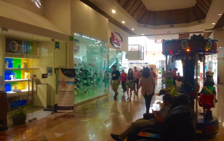 Foto de local en venta en  , zona hotelera norte, puerto vallarta, jalisco, 2635539 No. 07