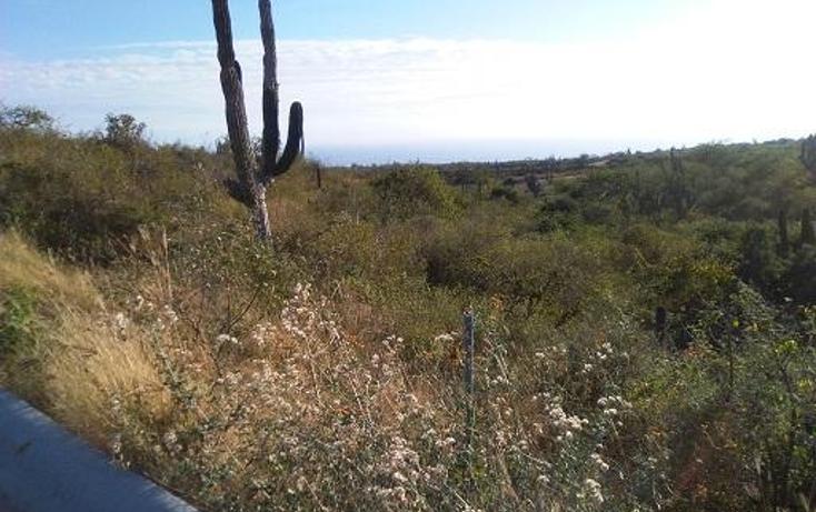 Foto de terreno habitacional en venta en  , zona hotelera san josé del cabo, los cabos, baja california sur, 1061433 No. 03