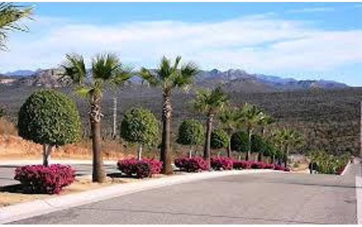 Foto de terreno habitacional en venta en  , zona hotelera san josé del cabo, los cabos, baja california sur, 1729930 No. 02