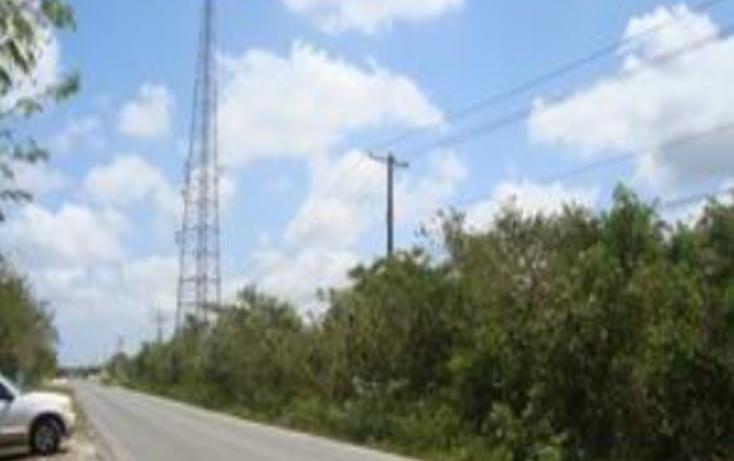 Foto de terreno comercial en venta en  , zona hotelera sur, cozumel, quintana roo, 1636806 No. 05