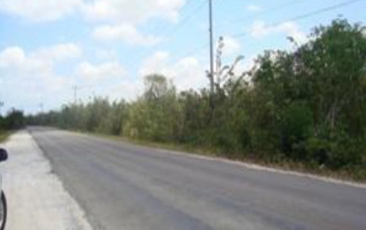 Foto de terreno comercial en venta en  , zona hotelera sur, cozumel, quintana roo, 1636806 No. 06